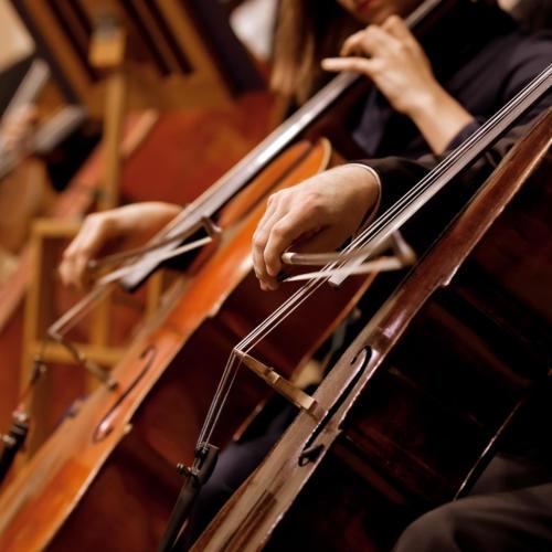 Orlando Symphony Orchestra Cellos